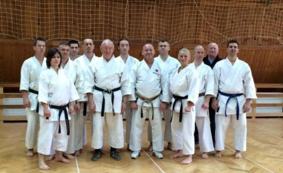 Karate: Kesic Bogdan nagymester 9 danos