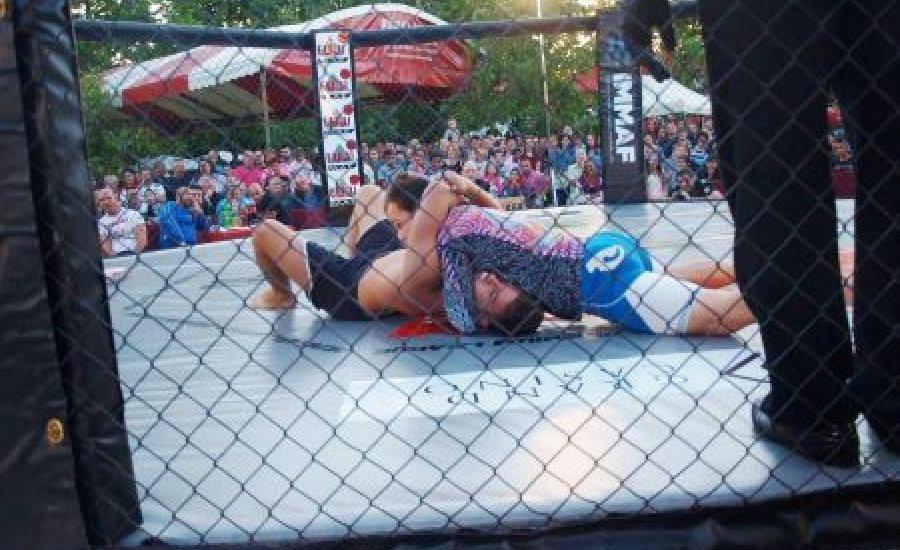 3. FUJI FIGHT- HMMAF kupa - ketrecharc gála