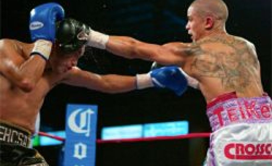 Wilfredo Vazquez Jr újabb TKO diadala