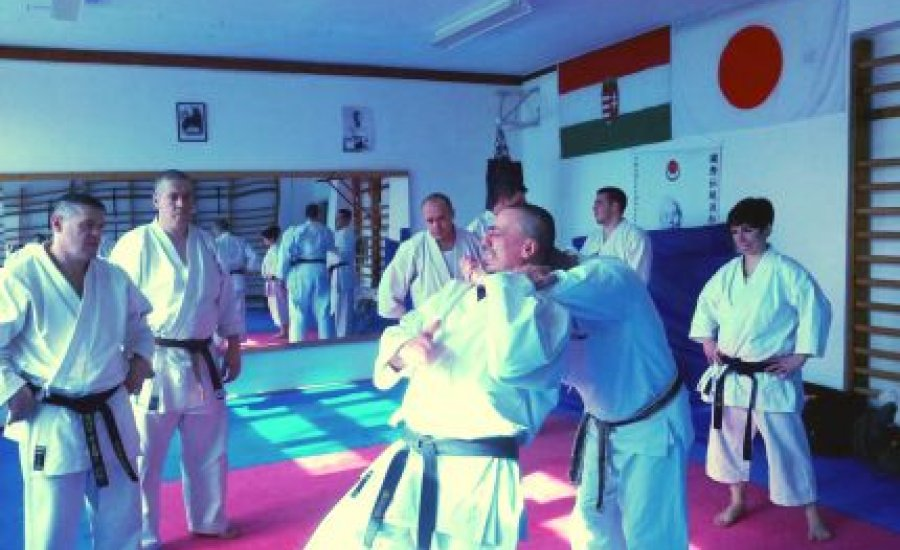 Karate szeminárium volt Keszthelyen
