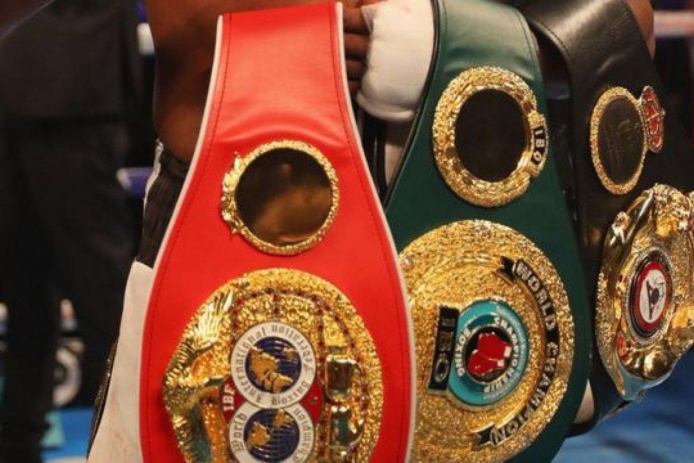boxing belts