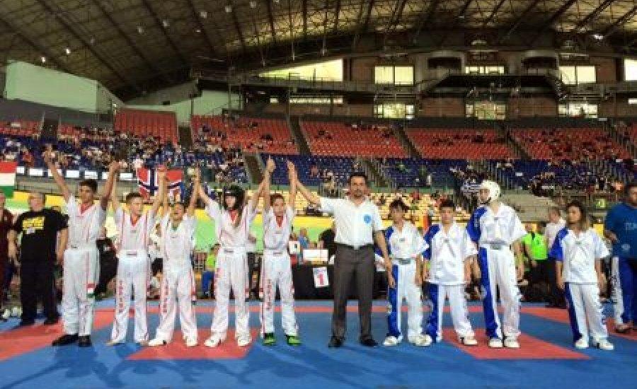 Kick-box Európa-bajnokság: 22 arany
